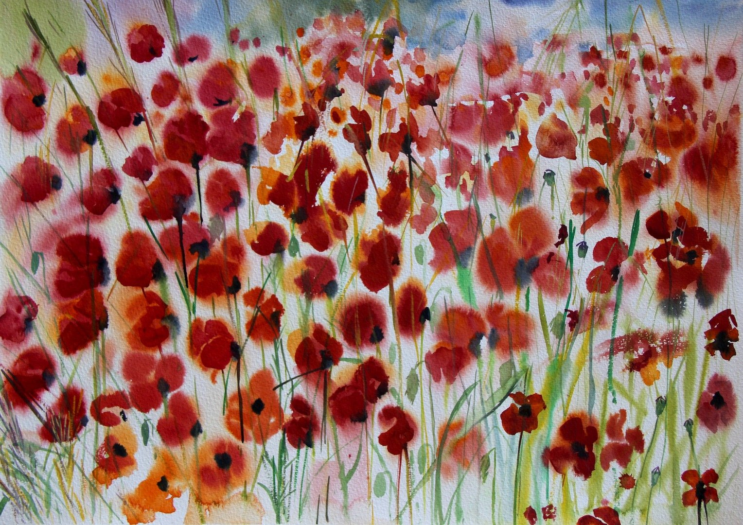 Poppies<br /> Watercolour on Arches 640gsm<br /> 57 cm x 76 cm