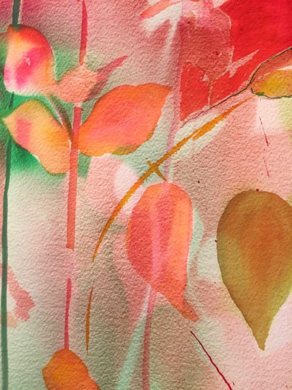 nter Roses 7 Ink on 640 gms Arches 76x57 cms