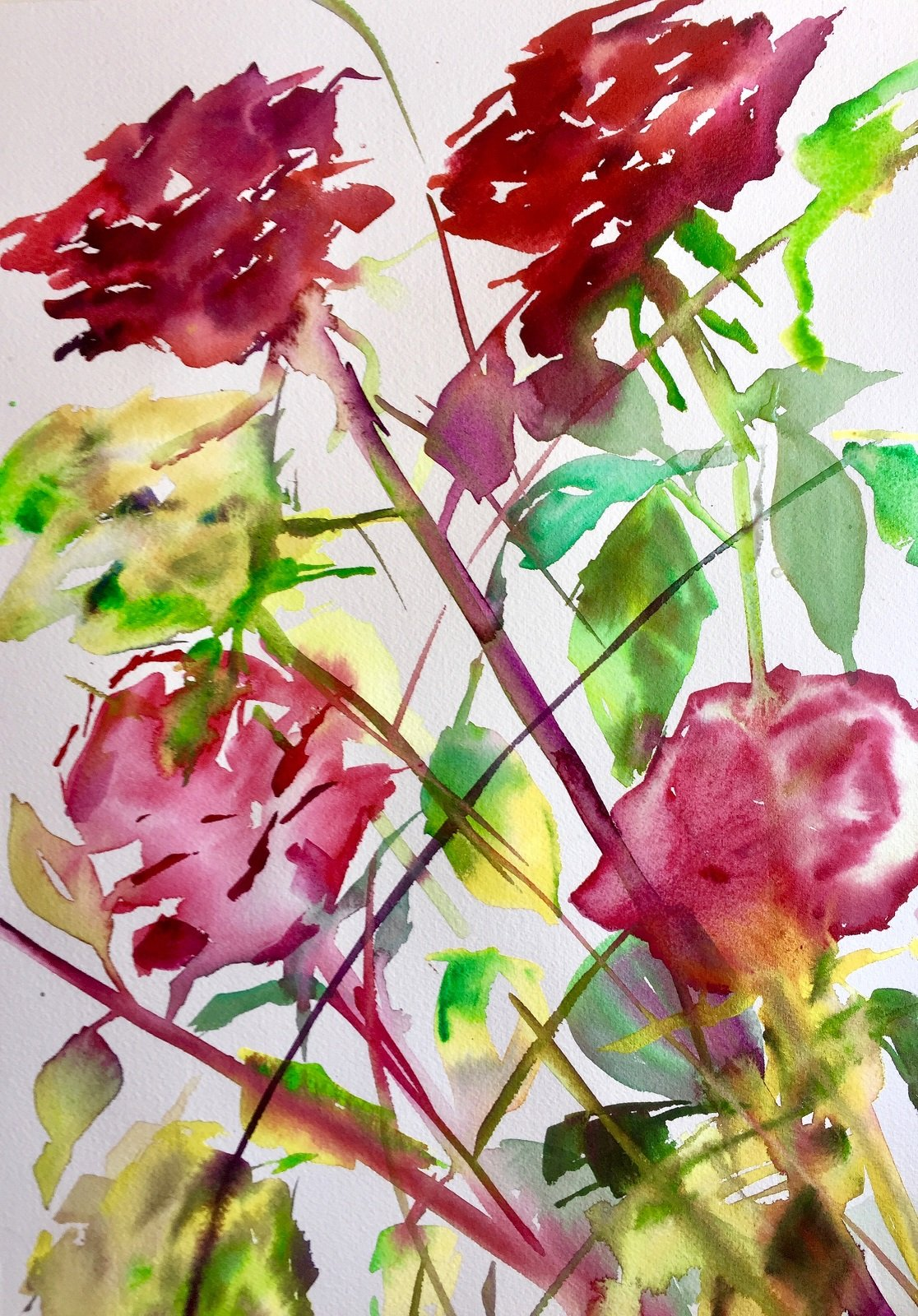 Winter Roses 3<br /> Water colour on 300 gms Arches<br /> 56 cm x 31 cm