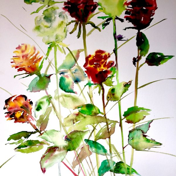 Winter Roses 6 Watercolour on Arches 640 gms 76 x 57 cm